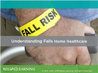 Understanding Falls in the Home